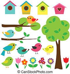 ensemble, de, oiseaux
