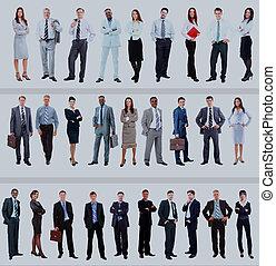 ensemble, de, professionnels, isolé, blanc