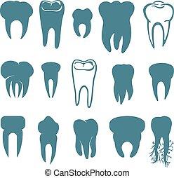 ensemble, dents humaines