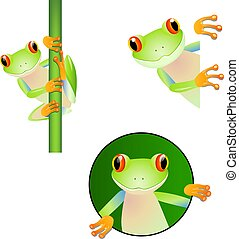 ensemble, dessin animé, grenouille, mignon