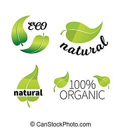 ensemble, eco, feuilles, vert, signes, blanc