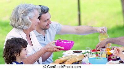 ensemble, famille manger, prolongé, déjeuner