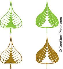 ensemble, feuille, illustration., bodhi, fig), vecteur, (sacred