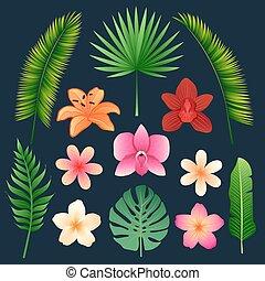 ensemble, feuilles, arbres, exotique, paume, fleurs