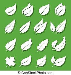 ensemble, feuilles, vecteur, arrière-plan vert, blanc, icône