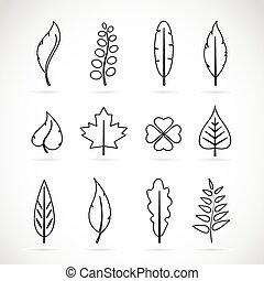ensemble, feuilles, vecteur, fond, blanc, icône
