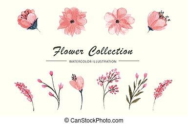 ensemble, feuilles, vecteur, fond, fleurs blanches