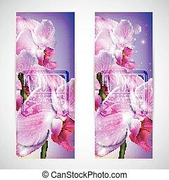 ensemble, fleur, cartes, orchidée
