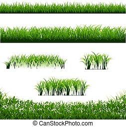 ensemble, grand, arrière-plan vert, frontières, herbe, blanc