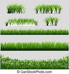ensemble, grand, arrière-plan vert, frontières, herbe, transparent
