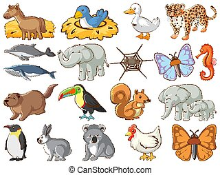 ensemble, grand, vie sauvage, animaux, insectes, beaucoup, types
