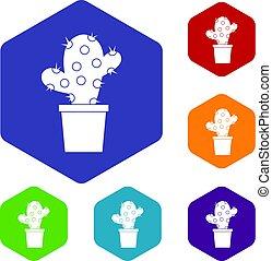 ensemble, hexagone, cactus, icônes