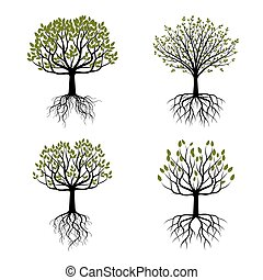 ensemble, illustration., arbre, vecteur, vert, roots.