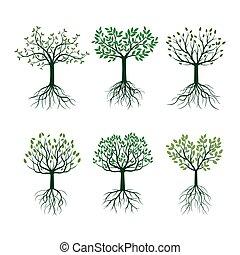 ensemble, illustration., arbres, vecteur, vert, pousse feuilles, roots.