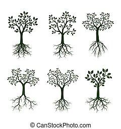 ensemble, illustration., arbres, vecteur, vert, roots.