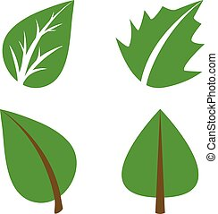ensemble, illustration., elements., ceci, feuilles, vecteur, vert, conception, image