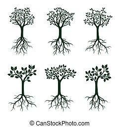 ensemble, illustration., feuilles, arbres, vecteur, vert, roots.