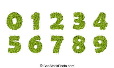 ensemble, isolé, herbe, vert, nombres, blanc