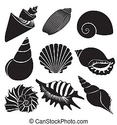 ensemble, isolated., seashell, shells., silhouettes, vecteur, mer