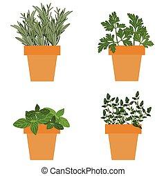aromate pot fleurs jardin argile doux voir aromatique illustration vecteurs. Black Bedroom Furniture Sets. Home Design Ideas