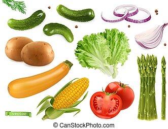 ensemble, maïs, asparagus., oignons, 3d, vecteur, coriandre, graines, pommes terre, concombres, salade verte, réaliste, courgette, tomate, légumes