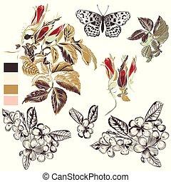 ensemble, main, vecteur, conception, floral, dessiné, éléments