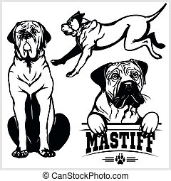ensemble, mastiff, -, chien, illustration, isolé, vecteur, ...
