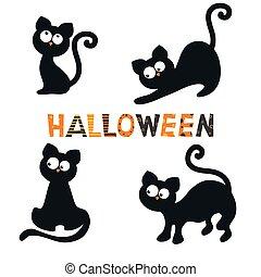 ensemble, noir, cats.