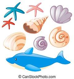 ensemble, océan, etoile mer, coquilles