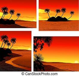ensemble, plage, coucher soleil, exotique, icône