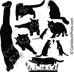 ensemble, puissance, isolé, chats, fond, blanc
