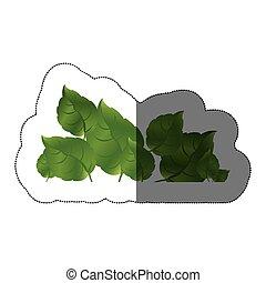 ensemble, réaliste, autocollant, milieu, vert, ombre, feuilles
