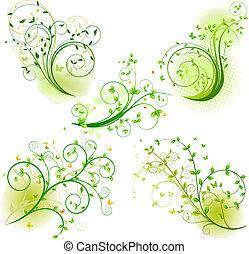 ensemble, résumé, éléments, floral