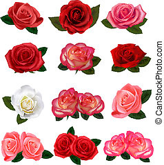 ensemble, roses, beau