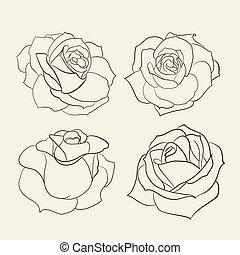 ensemble, roses.