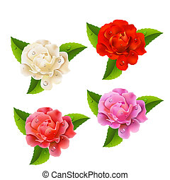 ensemble, roses