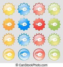 ensemble, signe., coloré, 16, grand poisson, moderne, boutons, vecteur, icône, ton, design.