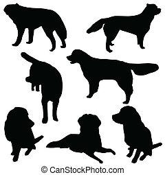 ensemble, silhouette, chiens, isolé
