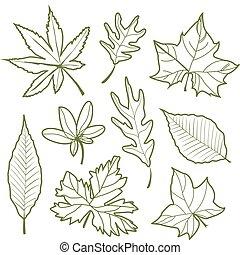ensemble, silhouette, nature, feuilles, illustration, automne, vecteur, ligne, icône