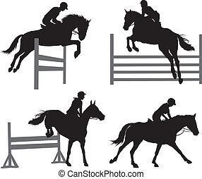 ensemble, sports équestres