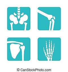 ensemble, squelette, genoux, monde médical, icons., main, boutons, symbols., orthopédique, vecteur, bassin, os, omoplate, app