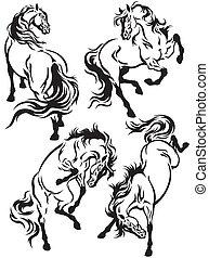ensemble, tatouage, chevaux