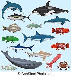 ensemble, vecteur, animaux, mer