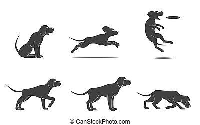 ensemble, vecteur, chien de chasse, chien