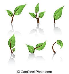 ensemble, vert, pousse feuilles