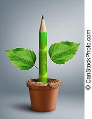 ensino primário, criativo, conceito, lápis, com, folhas, como, caule