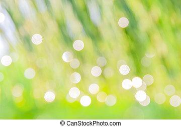 ensolarado, abstratos, verde, , sk