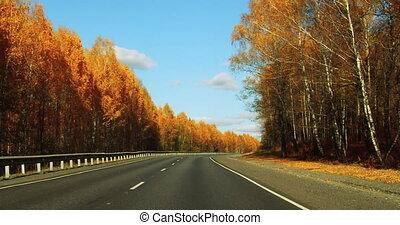 ensoleillé, automne, trafic, day., autoroute