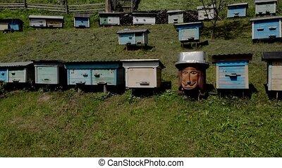 ensoleillé, bois, ruches, jardin, day.