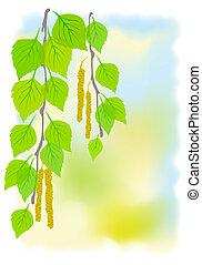 ensoleillé, fond, branches., printemps, bouleau